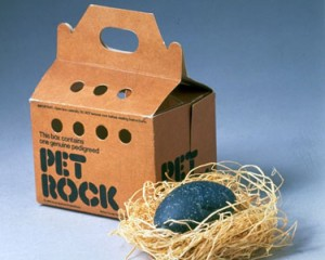 pet-rock-300x240