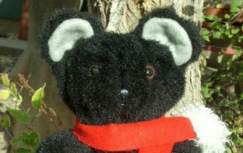 Little-Black-Bear