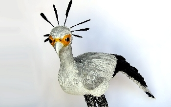 Handmade Bird Sculpture