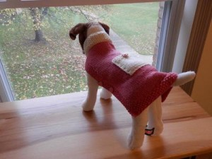 Hand knit dog sweater in size small by denise0929