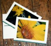 Sunshine Yellow Stationery Note Cards Set of 2
