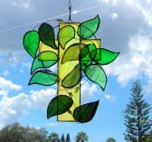 Cross Ivy Vine