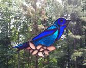 Indigo Blue Bunting in stained glass