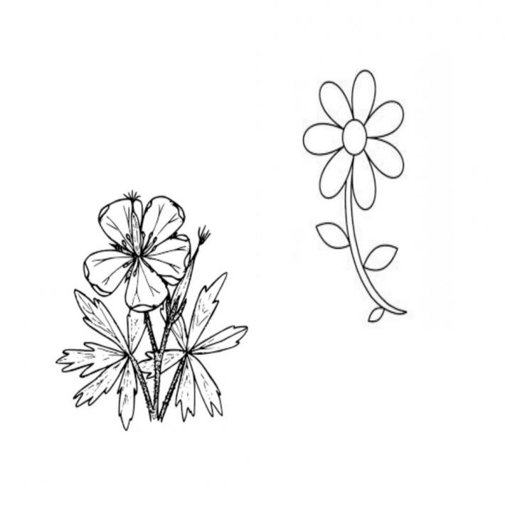 Adult Coloring Pages Set 3