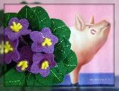 Lavender African Violet Felt Plant