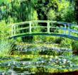 Water Lily Pond Cross Stitch Pattern