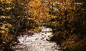 Mountain river photography print