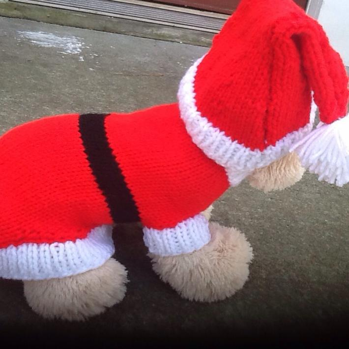 Santa paws petite dog sweater set