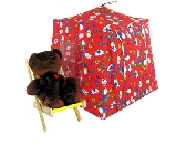 Red Toy Pop Up Tent and 2 Sleeping Bags with sports and bear print fabric