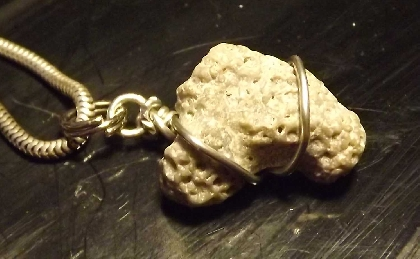 Wire Wrapped Fossilized Coral Pendant