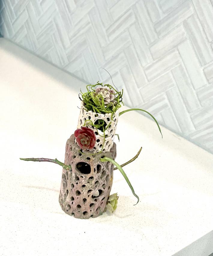 Cactus Skeleton Planter