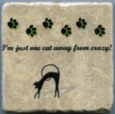 Im Just One Cat Away From Crazy 4 in x 4 in Natural Stone Tumbled Tile Coaster Wall Art Decor