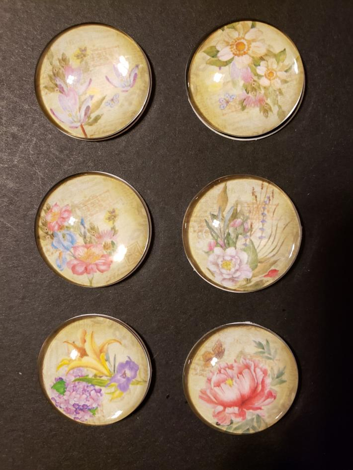 Flower Magnets Set of Six 1 inch Round Glass Floral