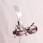 Eye Glass Holder Fork