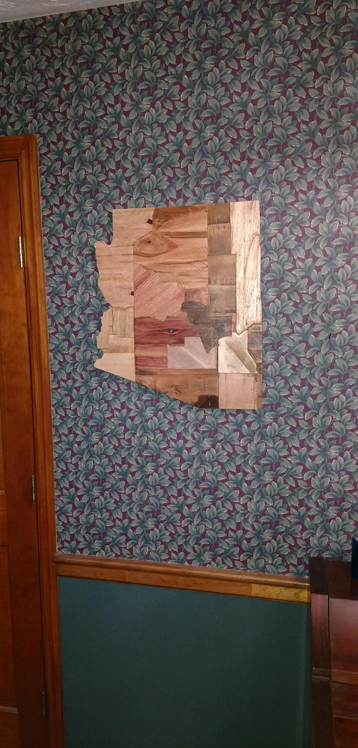 Rustic Wooden Arizona State with Counties Sign