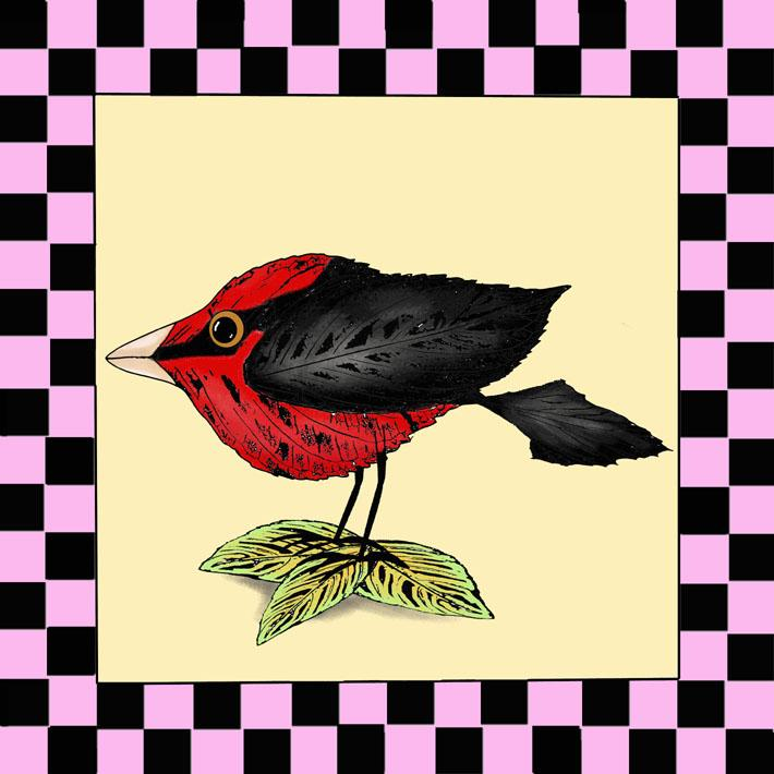 Folk Art Birds Kitchen Decor Country Home decor