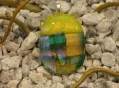 Dichroic Glass Cabochon Pendant 004