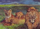 Lion Family A3 Poster Print