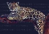 Leopard A3 Poster Print