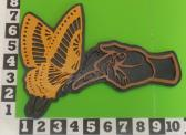 Fretwork Butterfly