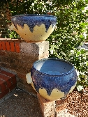 Planters of Blue and Yellow