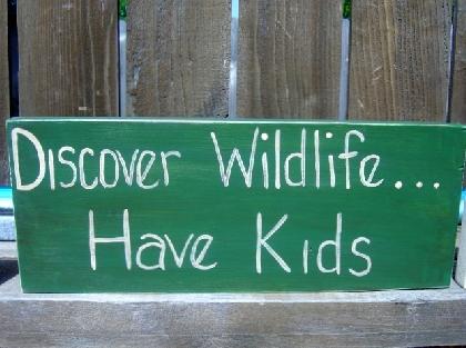 Discover Wildlife