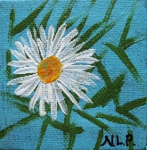 White Aster Flower Min Painting free easel