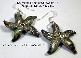 Starfish Earrings AJ