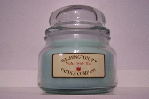 10 oz Soy Container Candle