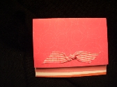 Steamy Hot Pink Note Cards