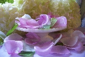 Silk Rose Petal Lavender Glycerin Soap