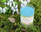 Clothesline Fresh 9oz Soy Candle