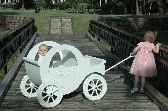 Cinderella Flower Girl Wagon
