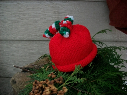 Hat Springy Curly Q Pixie Hat Cute Photo Prop 4 sizes Newborn up to 1 to 5 year Christmas 2011