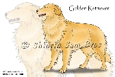 Golden Retriever 8x10 print