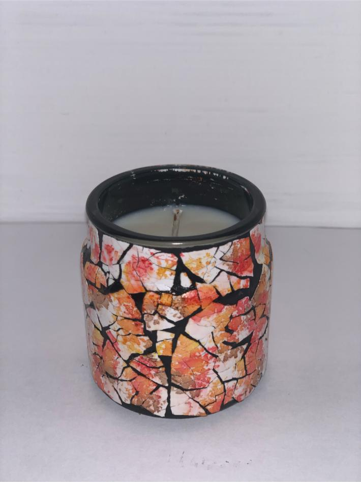 Outdoors Scented Eve Aura Candle