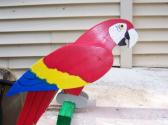 Handmade custom painted life size multi layered Parrot