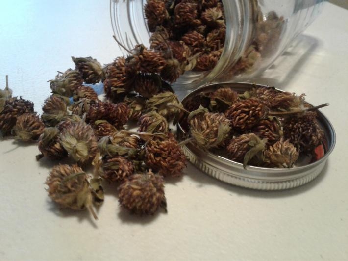 1 Ounce of Dried Red Clovers