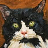 Custom Cat Portrait 8x8 or 8x10