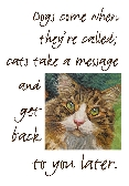 Cat lovers humorous print giclee print in 11x14 mat Cats Take a Message