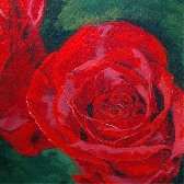 Rose painting giclee on canvas print with gallery wrap 24x24