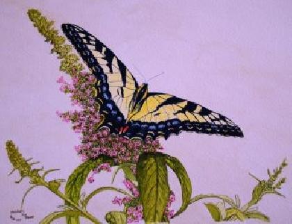 Butterfly Heaven Original Watercolor by Michael Joe Moore