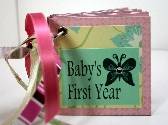 Butterfly Babys First Year Handmade Girl Keepsake Predecorated Chipboard Mini Album