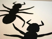 Ant Scrapbook Diecuts