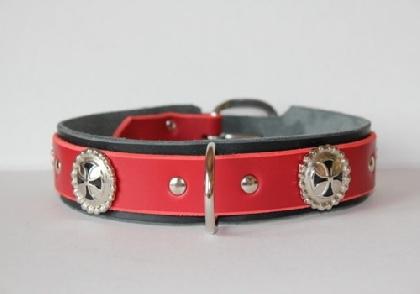 Cavalier Collar