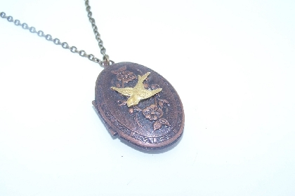 Steampunk inspired swallow locket