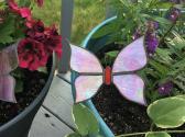 Iridescent Pink Garden Butterfly