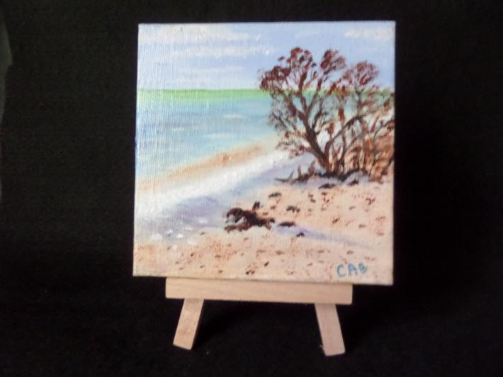 Bush on the Beach