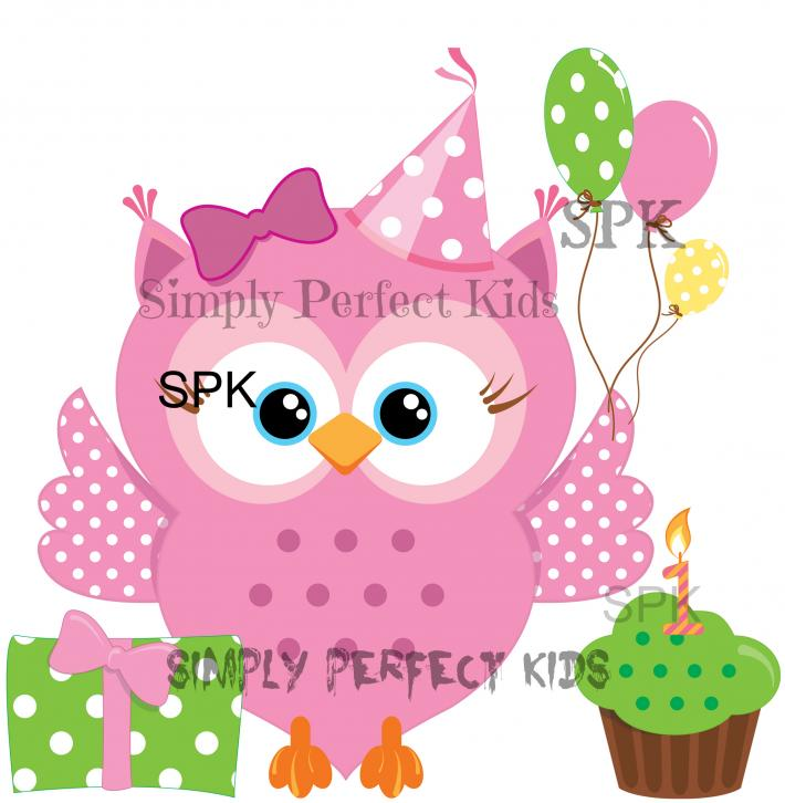 Pink Owl Birthday Girl Baby Toddler Onesie Tshirt Many Sizes Free Shipping in the USA