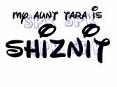 My aunt is the Shiznit Baby Onesie Toddler Tshirt Many Sizes